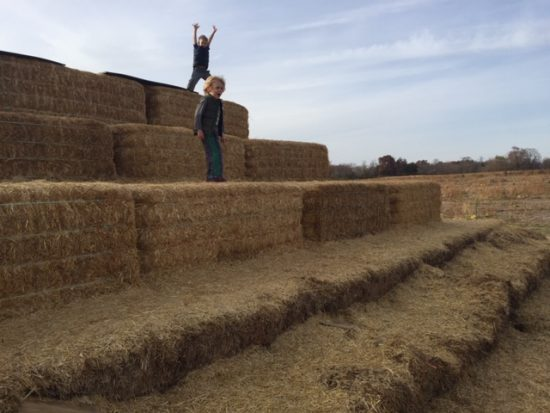 boys on stack of hay bales